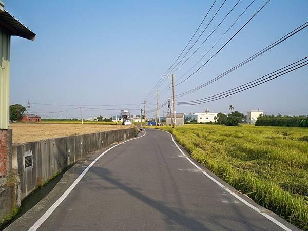 稻田軼事 收割02.JPG