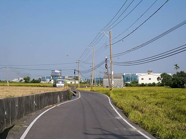 稻田軼事 收割03.JPG
