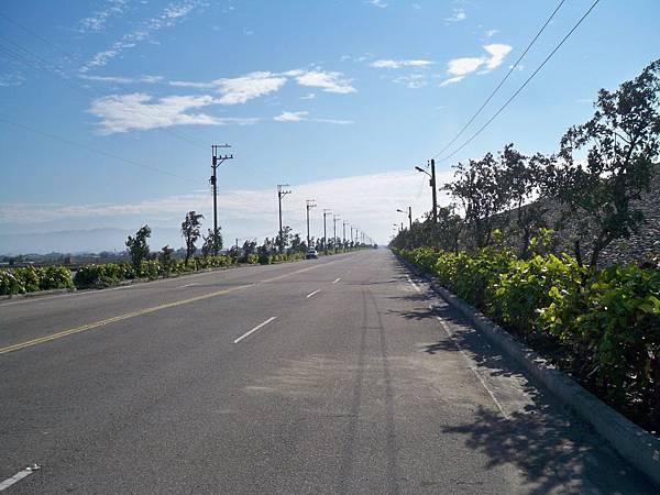 大安溪北岸道路 14.JPG