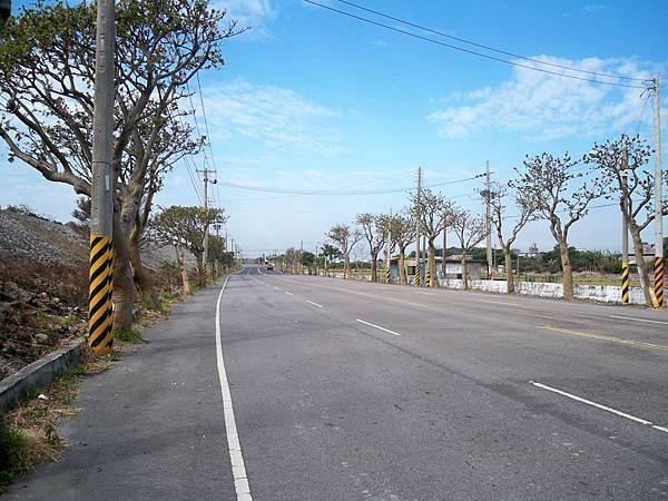 大安溪北岸道路 49.JPG