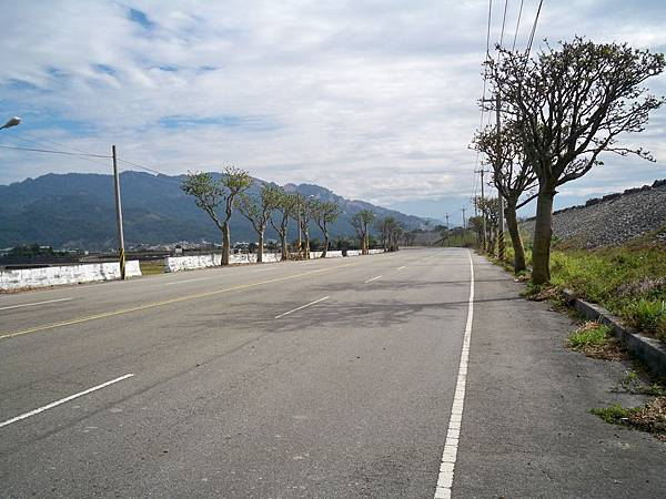 大安溪北岸道路 48.JPG