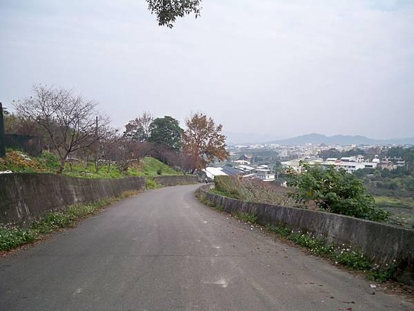 縣道129新社舊線再訪 06.JPG