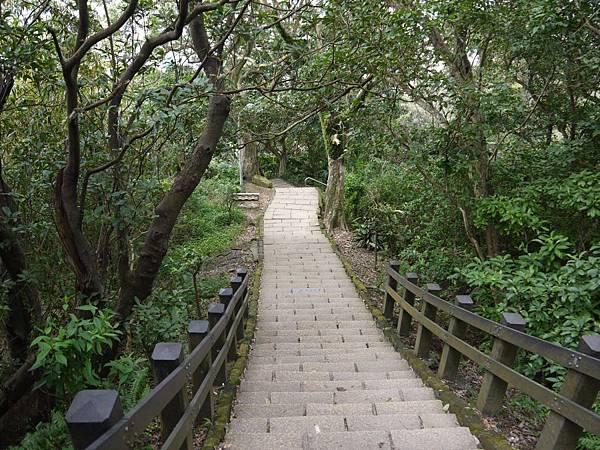 象山親山步道 17.JPG