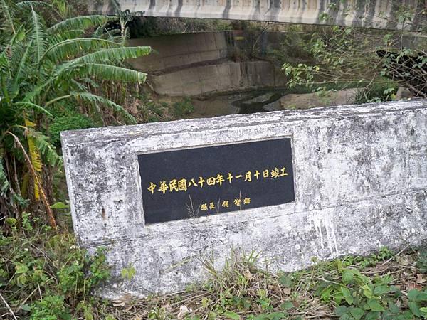苗31 49.JPG