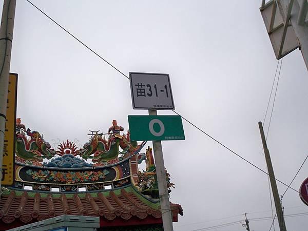苗31-1 29.JPG