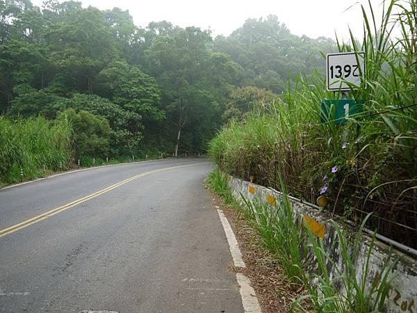 縣道139乙 (9).JPG