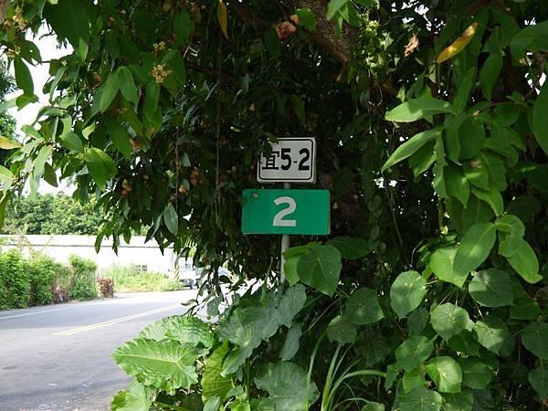 宜5-2 (24).JPG