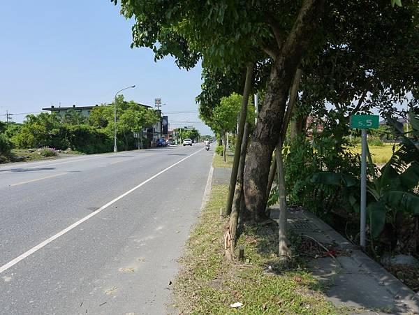 縣道191 (42).JPG