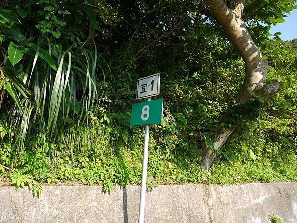 宜1 (80).JPG