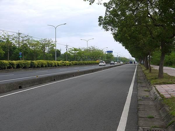 台12線&BRT (112).JPG
