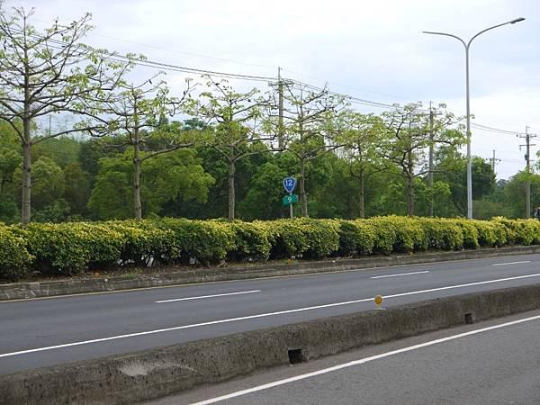 台12線&BRT (113).JPG