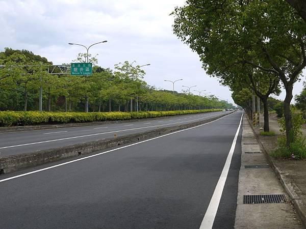 台12線&BRT (119).JPG