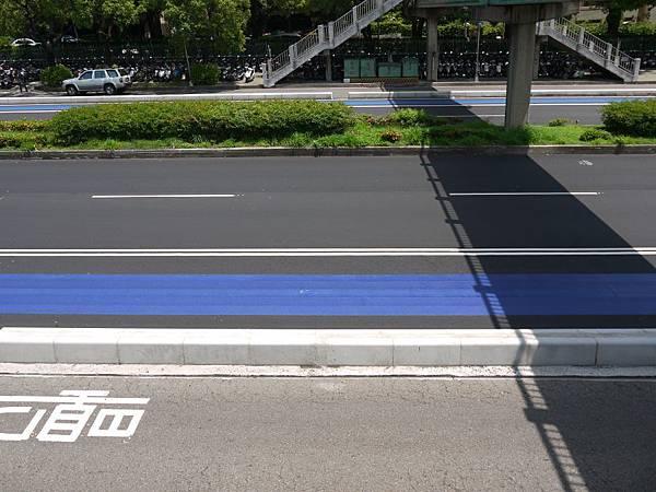 台12線&BRT (174).JPG
