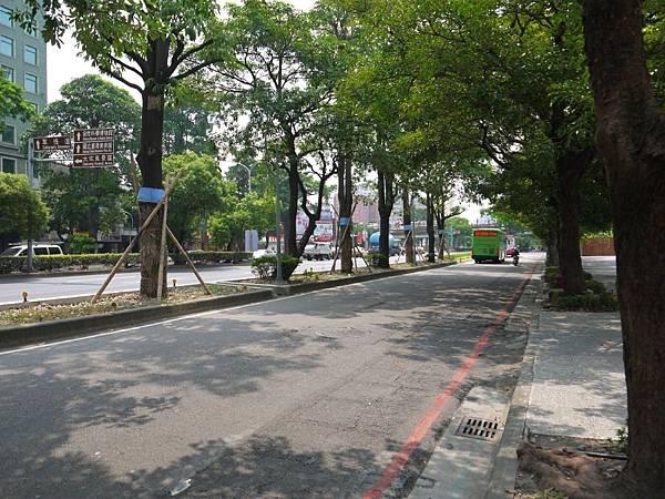 台12線&BRT (246).JPG