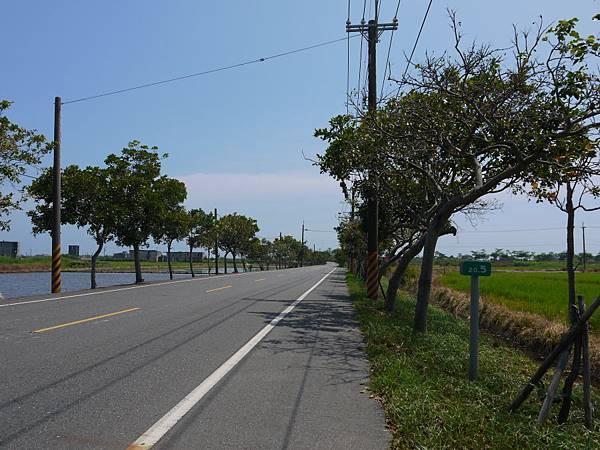 縣道196 18k以東 (13).JPG