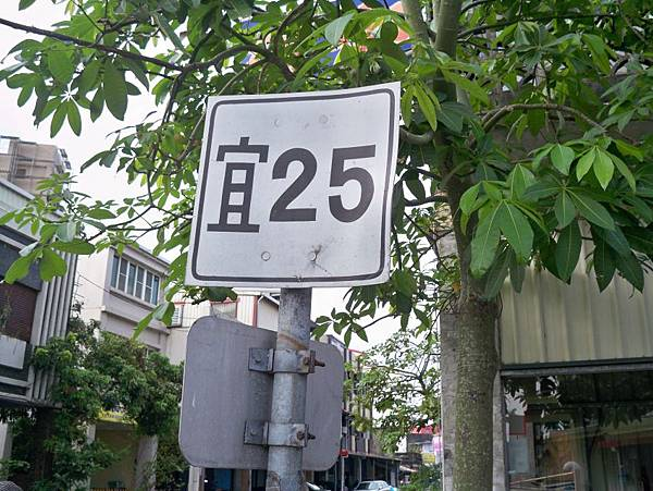 宜25 (9).JPG