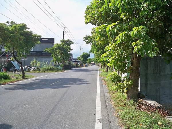 宜25 (67).JPG