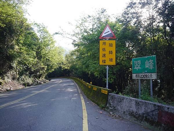 台14甲 翠峰以東 (10).JPG