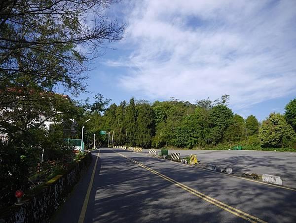 台14甲 翠峰以東 (14).JPG