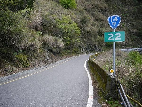 台14甲 翠峰以東 (36).JPG