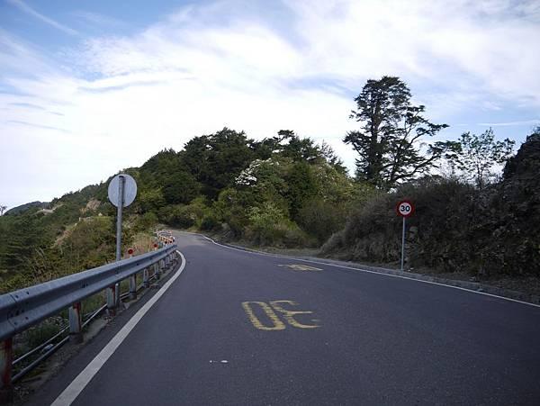 台14甲 翠峰以東 (70).JPG