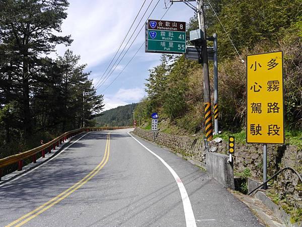 台14甲 翠峰以東 (311).JPG