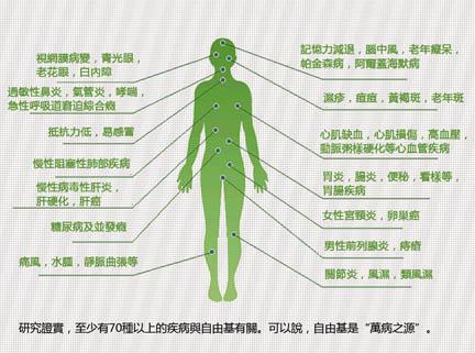 自由基對人體的傷害-7