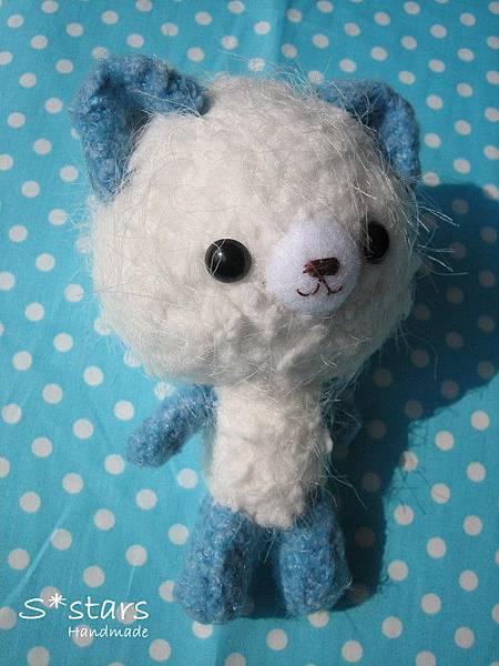 白鬚鬚小藍棉貓1