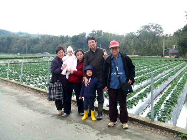 草莓全家福.jpg