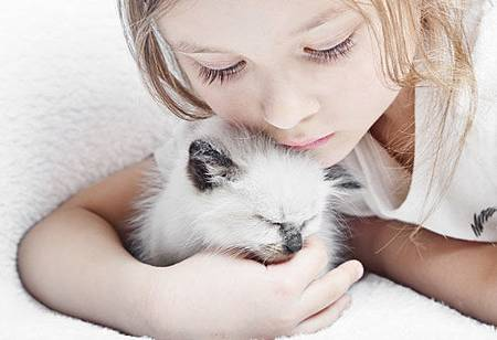 kitten-cat-kids-shutterstock_98379929