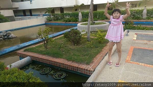 IMAG3500.jpg