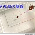 肥滋滋的壁蝨II