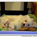 DANNY2004.7.12.jpg