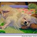 DANNY2004.7.12~.jpg