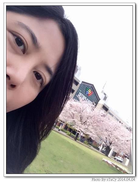 IMG_9865_nEO_IMG