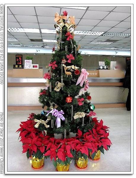 BANK 耶誕樹
