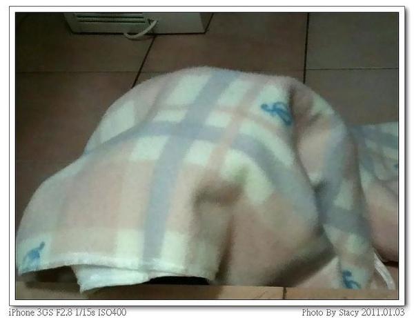 20110103~1_nEO_IMG_nEO_IMG.jpg