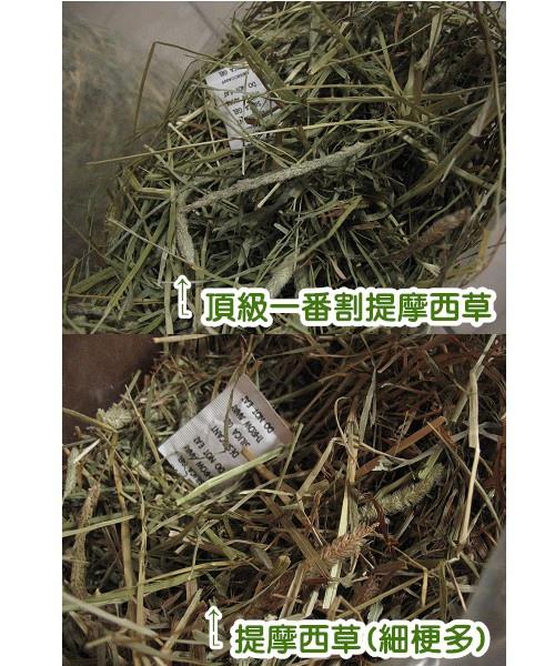 990706˙愛沛旺牧草2.jpg