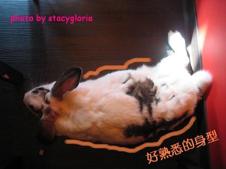971115˙兔寶生日會+小組聚會2