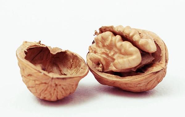 胡桃Walnuts