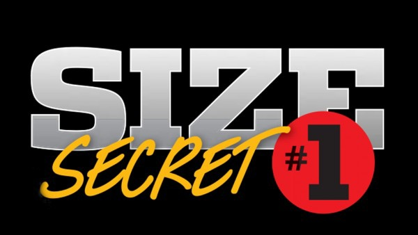 11flex_10-size-secrets_1_970
