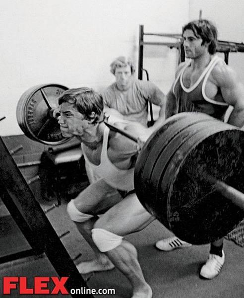 13flex_arnold_squat_inset