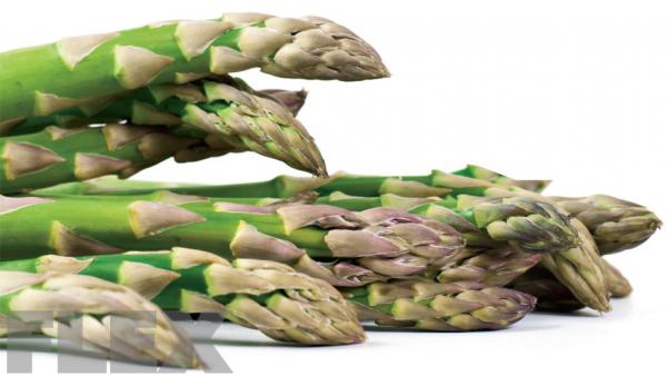 asparagus_1