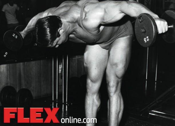 Arnold Rear delts