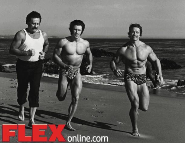 Arnold cardio