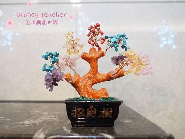 招財樹_190112_0007.jpg