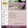 pixnet-lavender.jpg