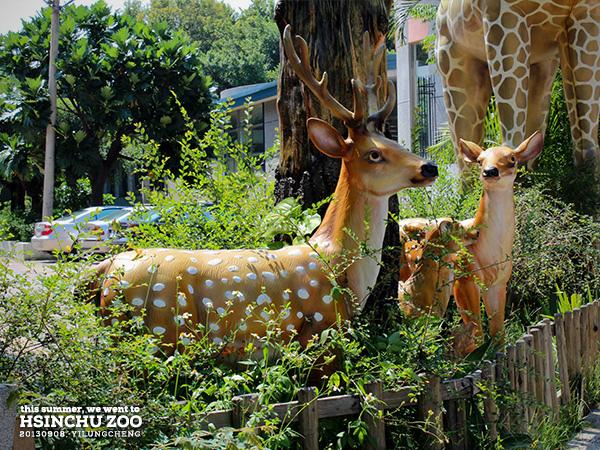 新竹動物園03