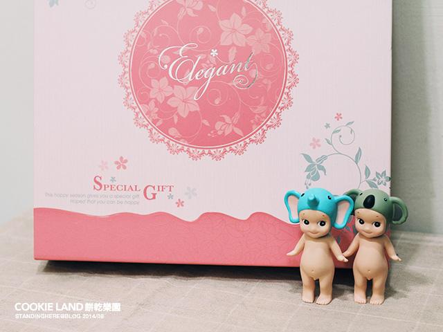 cookieland-1.jpg