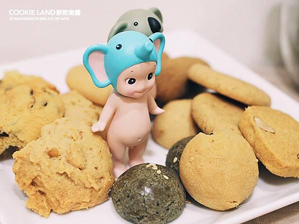 cookieland-6.jpg
